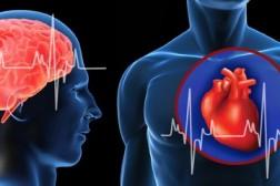 50 000 nordmenn har hjerteflimmer uten å vite om det!